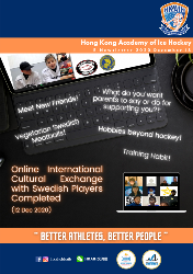 Online International Cultural Exchange with Swedish Players Completed